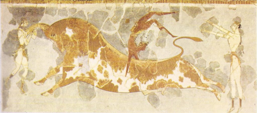 The famous bull games or dances of Minoan Crete are depicted in this fresco from the palace of Knossos.  The religious significance of these games, if they had any is unknown. Some have doubted whether the acrobatic feats shown were, in fact, ever accomplished.